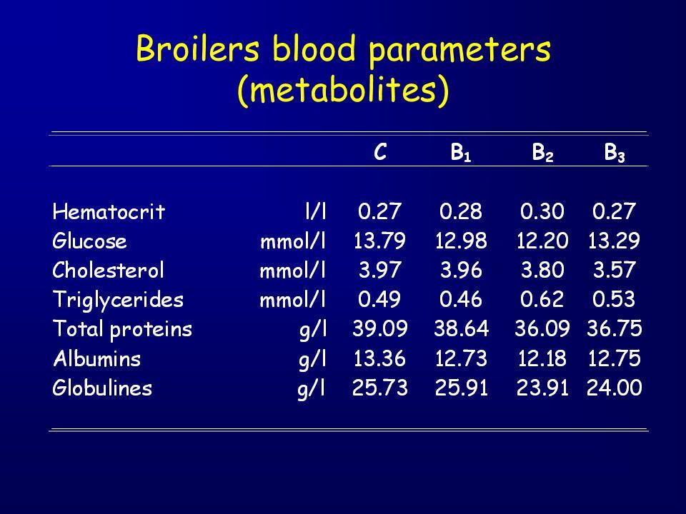 Broilers blood parameters (metabolites)