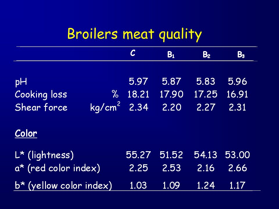 Broilers meat quality