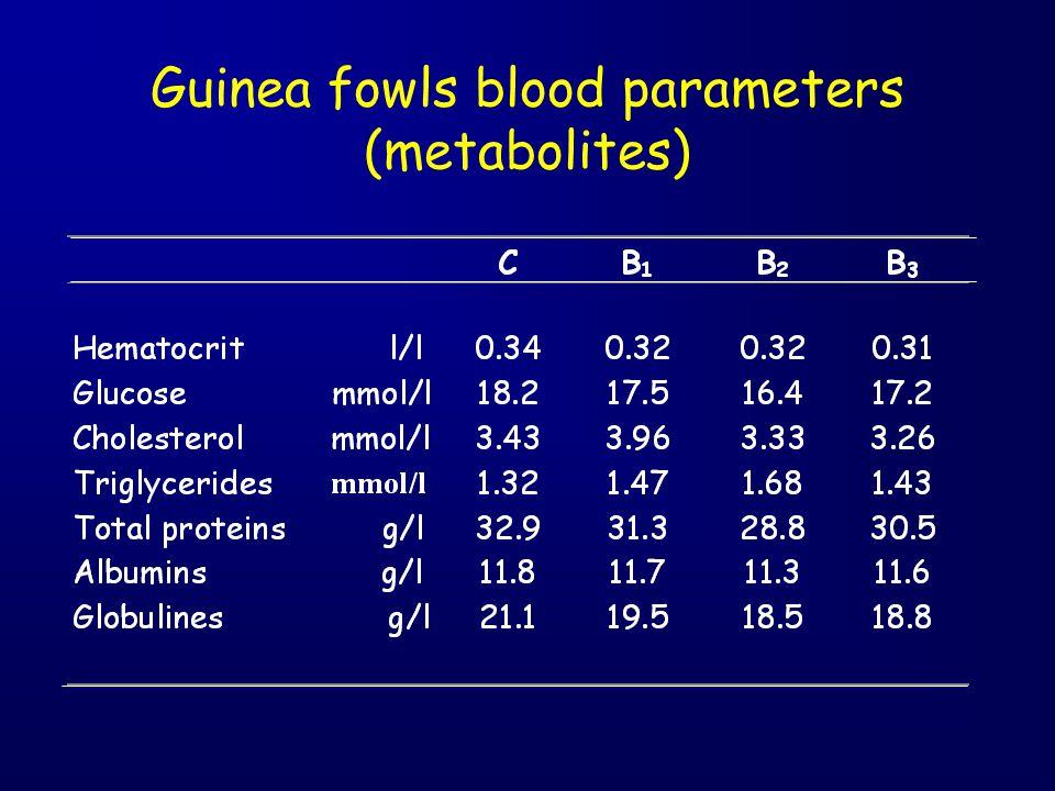 Guinea fowls blood parameters (metabolites)