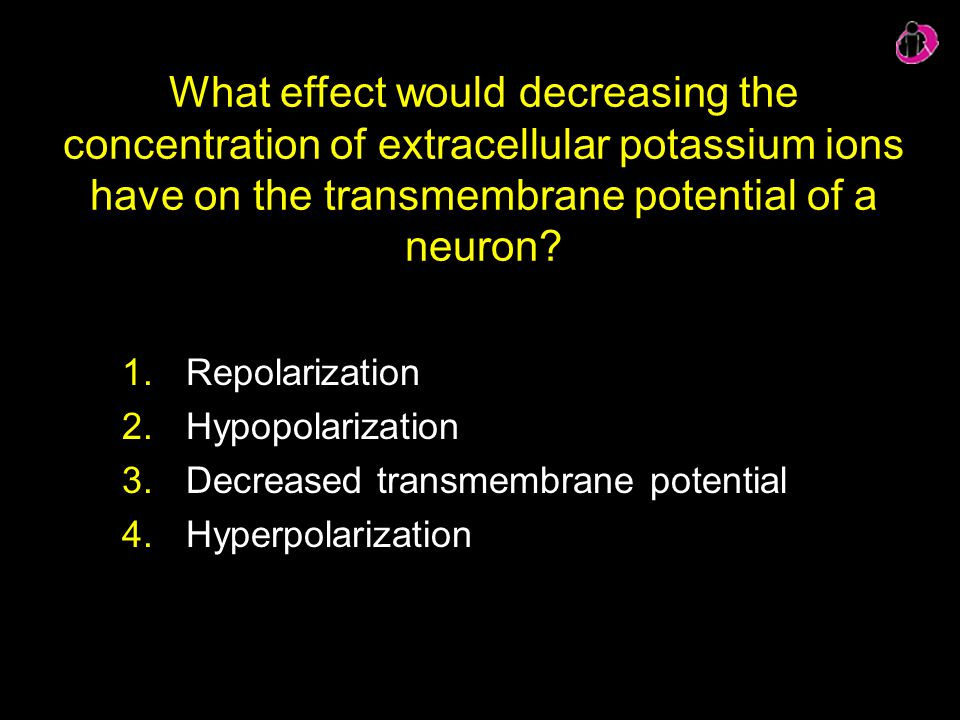 What effect would decreasing the concentration of extracellular potassium ions have on the transmembrane potential of a neuron? 1.Repolarization 2.Hyp