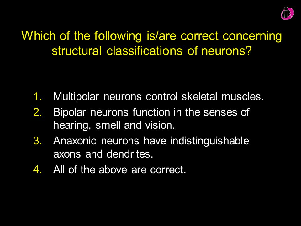 Which of the following is/are correct concerning structural classifications of neurons? 1.Multipolar neurons control skeletal muscles. 2.Bipolar neuro