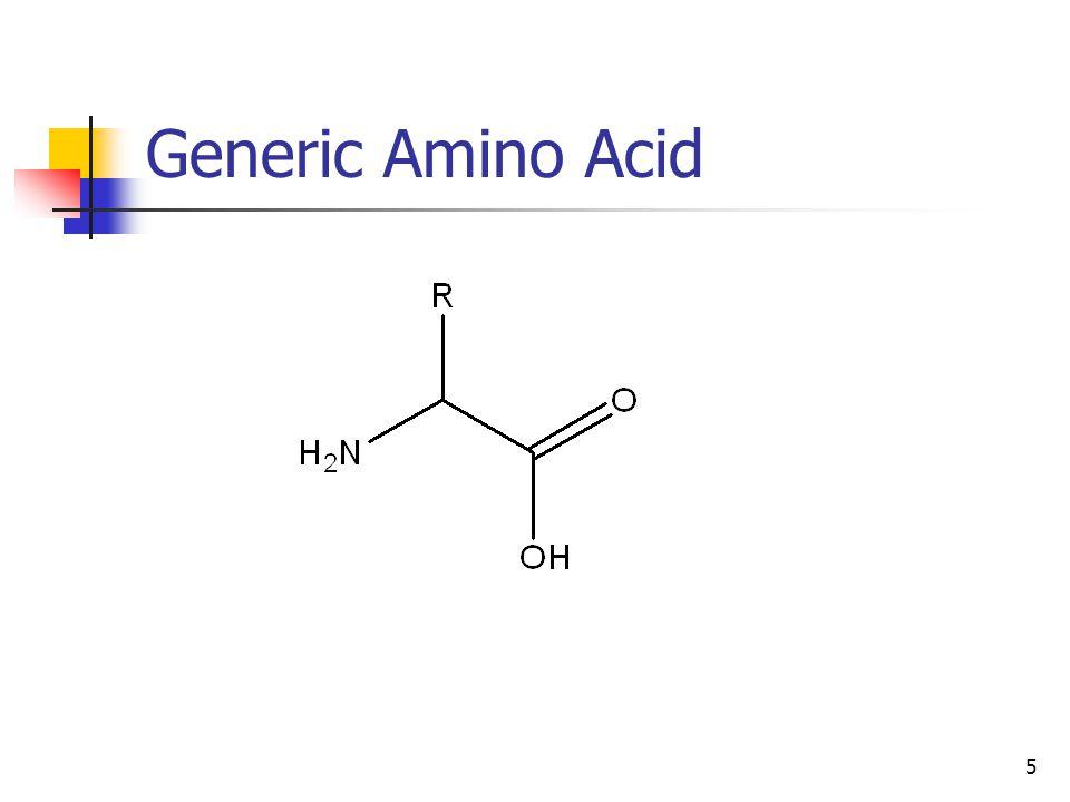 5 Generic Amino Acid