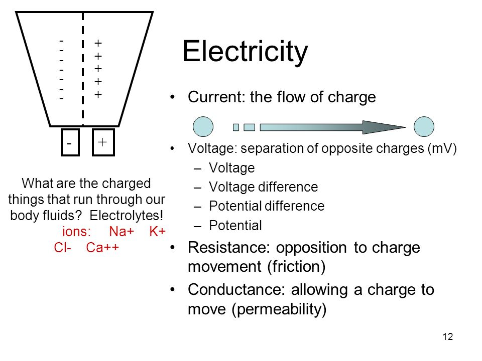 12 Electricity Current: the flow of charge Voltage: separation of opposite charges (mV) –Voltage –Voltage difference –Potential difference –Potential Resistance: opposition to charge movement (friction) Conductance: allowing a charge to move (permeability) ++++++++++ - - - - - - - - - - - - - - -+ What are the charged things that run through our body fluids.