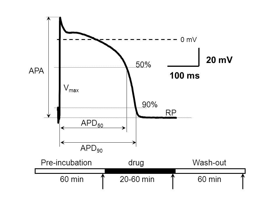drug 60 min20-60 min60 min 0 mV 20 mV 100 ms APA RP APD 50 APD 90 90% 50% V max Wash-outPre-incubation