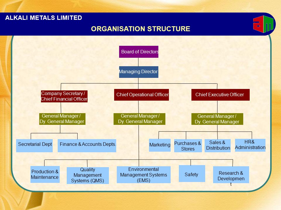 ALKALI METALS LIMITED ORGANISATION STRUCTURE Board of Directors Company Secretary / Chief Financial Officer Managing Director Chief Operational Office