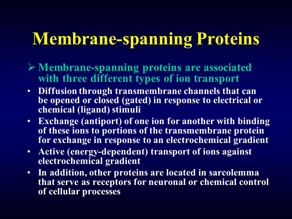 Membrane-spanning Proteins  Membrane-spanning proteins are associated with three different types of ion transport Diffusion through transmembrane channels that can be opened or closed (gated) in response to electrical or chemical (ligand) stimuli Exchange (antiport) of one ion for another with binding of these ions to portions of the transmembrane protein for exchange in response to an electrochemical gradient Active (energy-dependent) transport of ions against electrochemical gradient In addition, other proteins are located in sarcolemma that serve as receptors for neuronal or chemical control of cellular processes