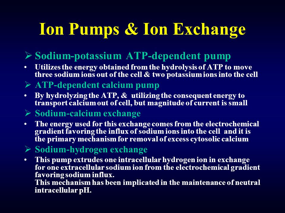 Ion Pumps & Ion Exchange  Sodium-potassium ATP-dependent pump Utilizes the energy obtained from the hydrolysis of ATP to move three sodium ions out o