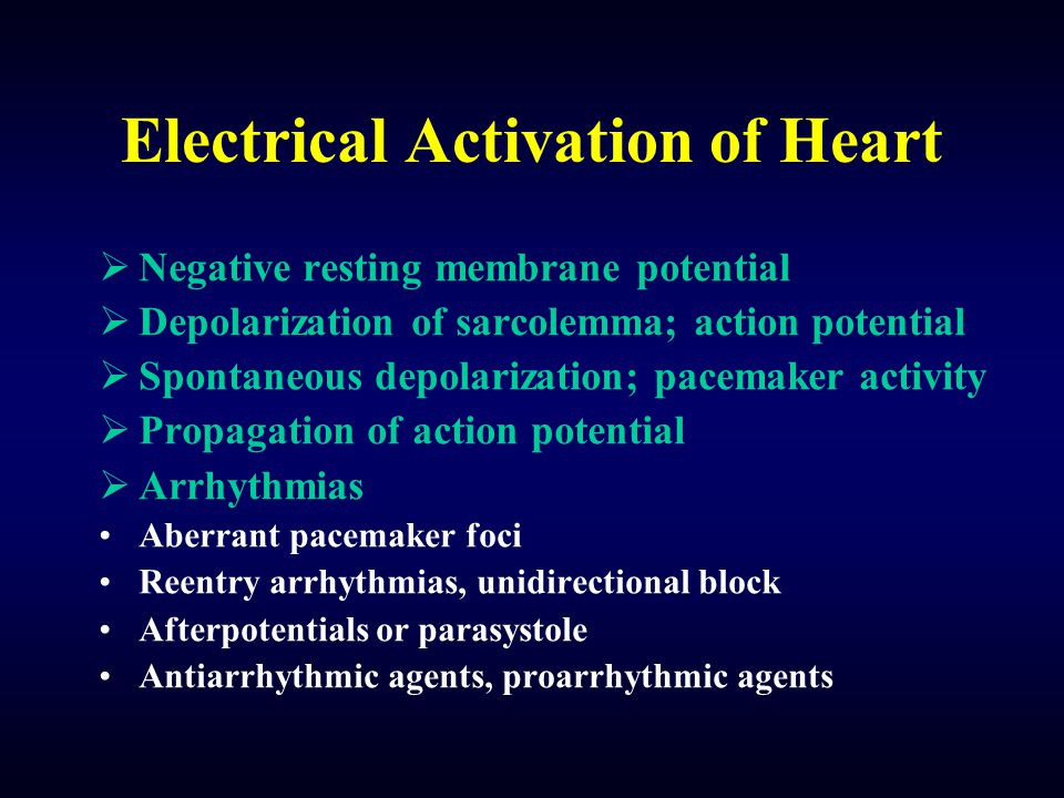 Electrical Activation of Heart  Negative resting membrane potential  Depolarization of sarcolemma; action potential  Spontaneous depolarization; pa