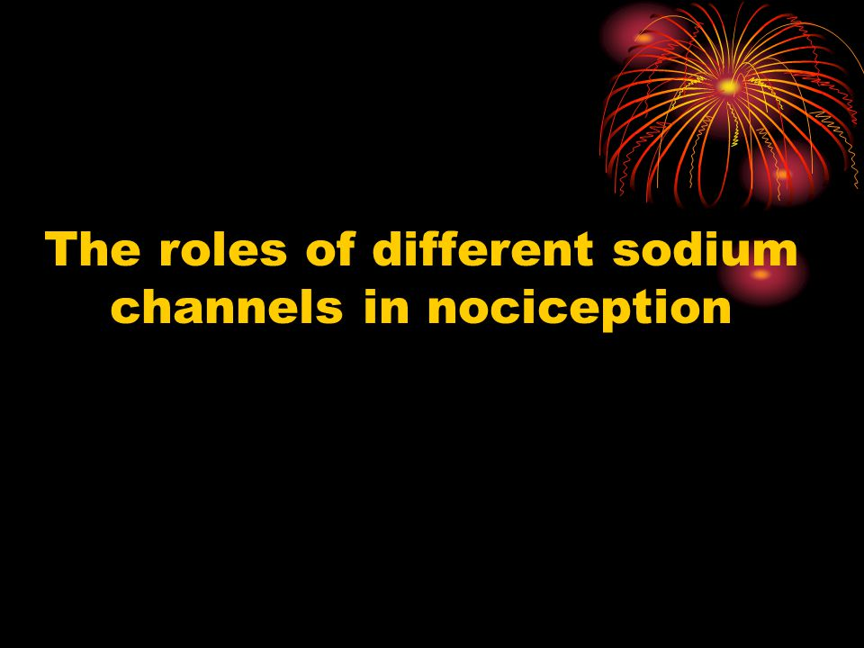 The roles of different sodium channels in nociception