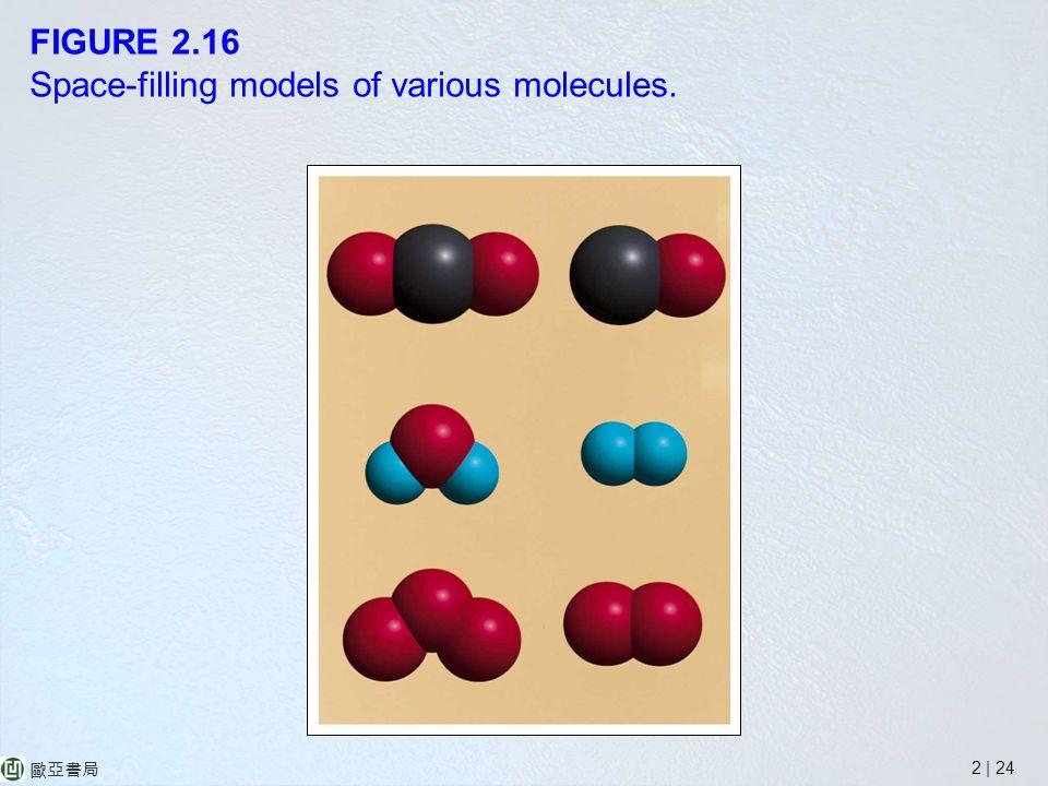 2 | 24 歐亞書局 FIGURE 2.16 Space-filling models of various molecules.