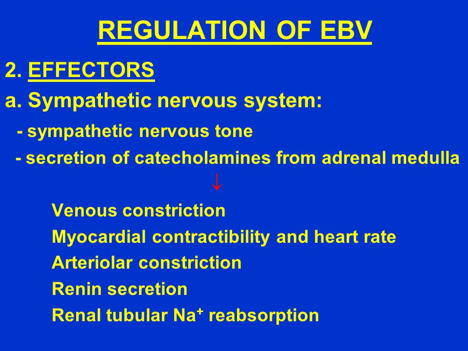 REGULATION OF EBV 2. EFFECTORS a.
