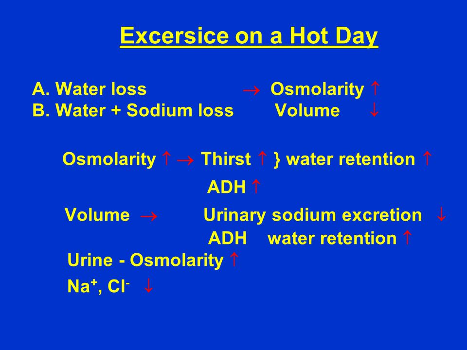 Excersice on a Hot Day A. Water loss  Osmolarity  B.