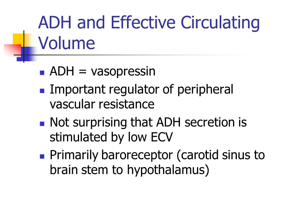 ADH and Effective Circulating Volume ADH = vasopressin Important regulator of peripheral vascular resistance Not surprising that ADH secretion is stimulated by low ECV Primarily baroreceptor (carotid sinus to brain stem to hypothalamus)