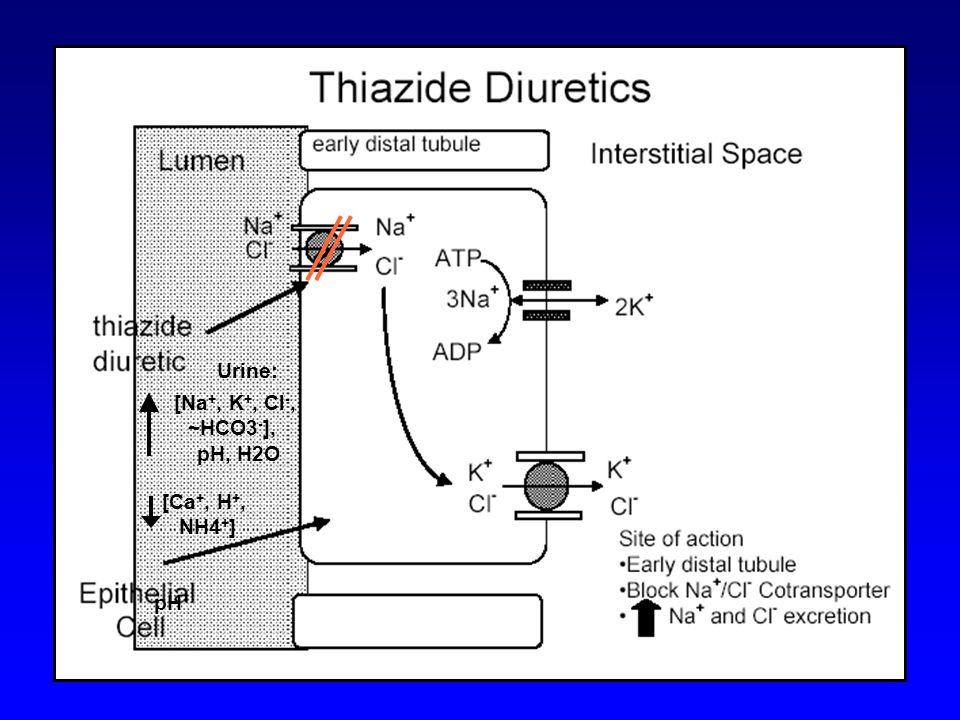 Urine: [Na +, K +, Cl -, ~HCO3 - ], pH, H2O pH [Ca +, H +, NH4 + ]