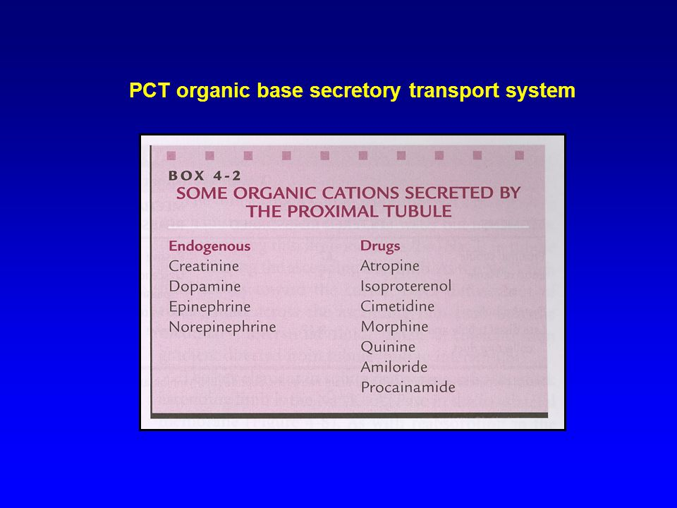 PCT organic base secretory transport system