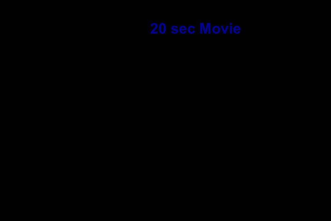 20 sec Movie