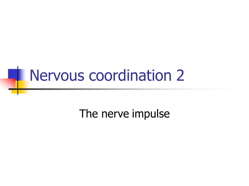 NERVE IMPULSES The nerve impulse involves the movement of ions through the axon membrane When a neurone is not conducting an impulse it is in the Resting State and the inside has a slight negative charge When positively charged Na ions enter, the inside is briefly positive; Depolarised, generating an Action Potential.