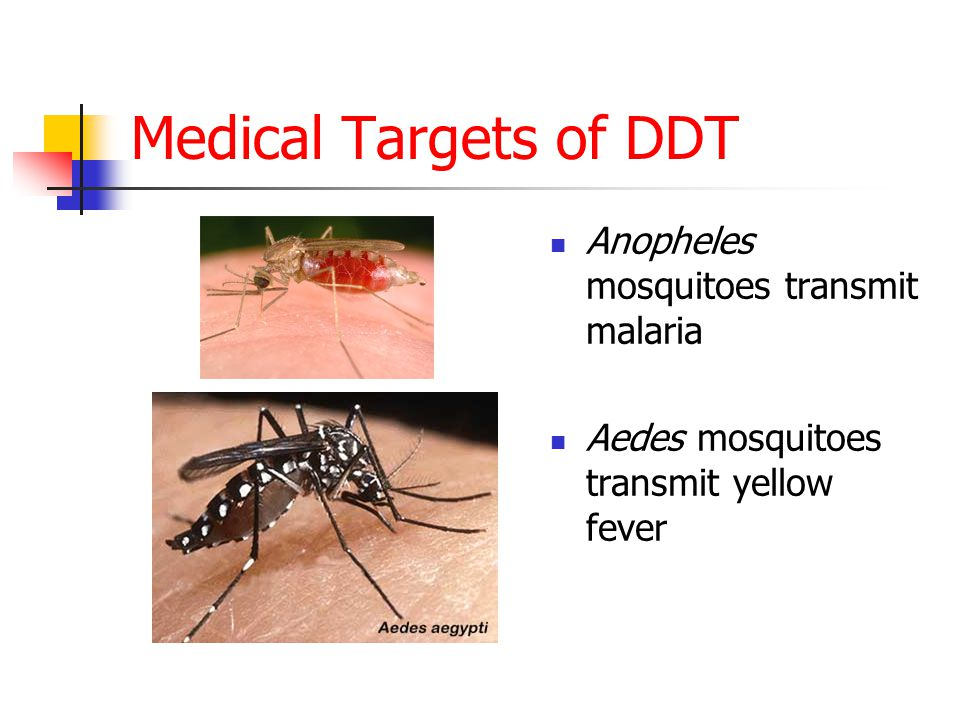 Medical Targets of DDT Anopheles mosquitoes transmit malaria Aedes mosquitoes transmit yellow fever