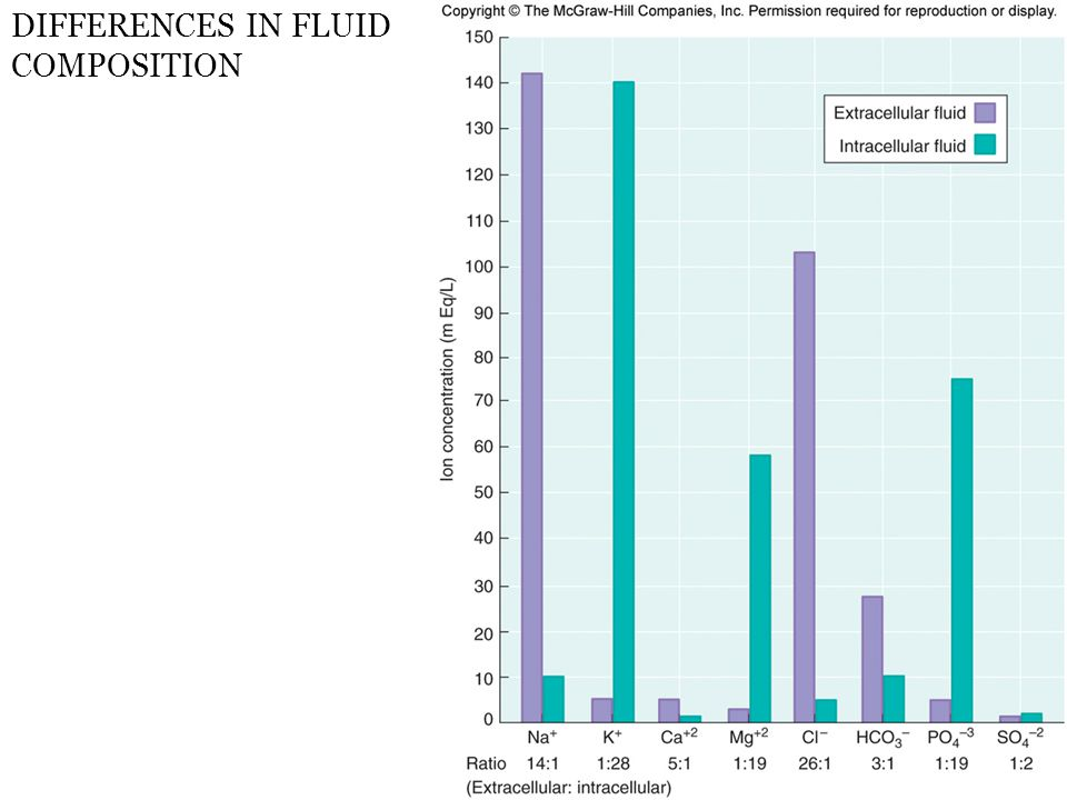 DIFFERENCES IN FLUID COMPOSITION
