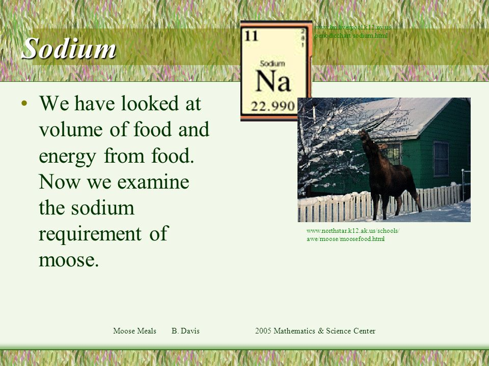 Moose Meals B. Davis 2005 Mathematics & Science Center Sodium We have looked at volume of food and energy from food. Now we examine the sodium require