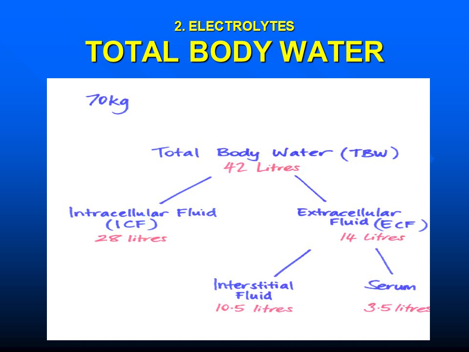 2. ELECTROLYTES TOTAL BODY WATER