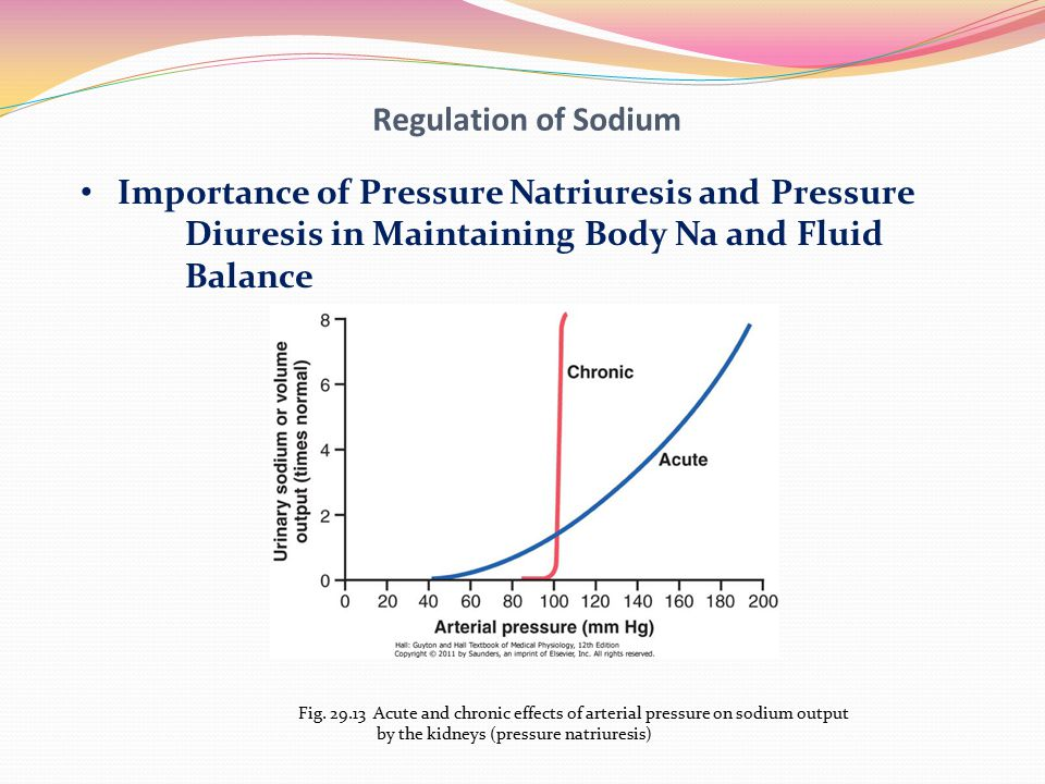 Regulation of Sodium Importance of Pressure Natriuresis and Pressure Diuresis in Maintaining Body Na and Fluid Balance Fig. 29.13 Acute and chronic ef