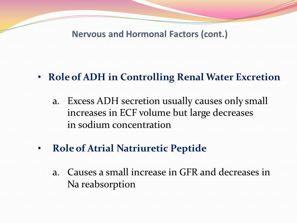 Nervous and Hormonal Factors (cont.) Role of ADH in Controlling Renal Water Excretion a.Excess ADH secretion usually causes only small increases in EC