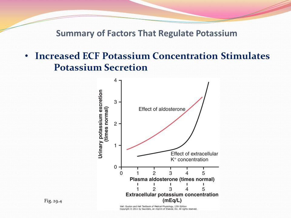 Summary of Factors That Regulate Potassium Increased ECF Potassium Concentration Stimulates Potassium Secretion Fig.