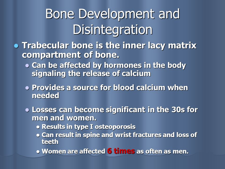Bone Development and Disintegration Trabecular bone is the inner lacy matrix compartment of bone.