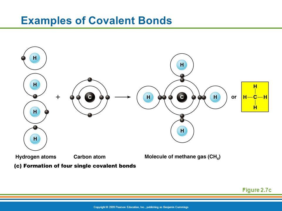 Copyright © 2009 Pearson Education, Inc., publishing as Benjamin Cummings Examples of Covalent Bonds Figure 2.7c