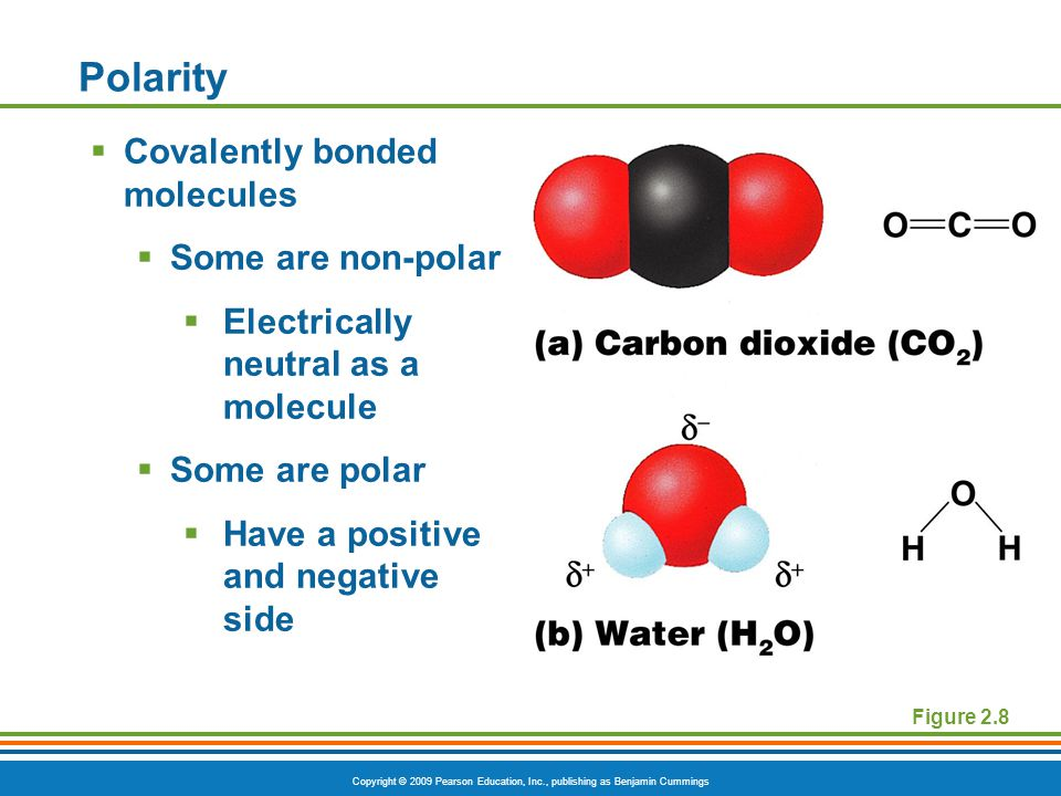 Copyright © 2009 Pearson Education, Inc., publishing as Benjamin Cummings Polarity  Covalently bonded molecules  Some are non-polar  Electrically neutral as a molecule  Some are polar  Have a positive and negative side Figure 2.8