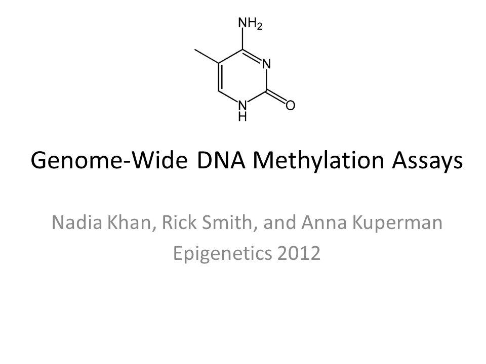 Genome-Wide DNA Methylation Assays Nadia Khan, Rick Smith, and Anna Kuperman Epigenetics 2012