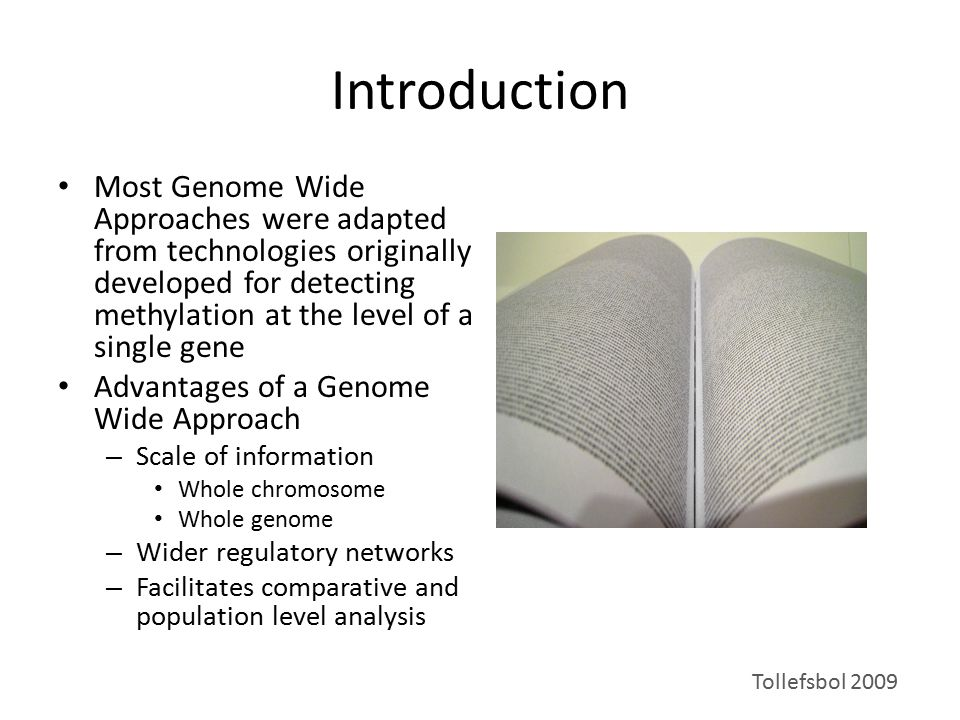 Introduction Most Genome Wide Approaches were adapted from technologies originally developed for detecting methylation at the level of a single gene A