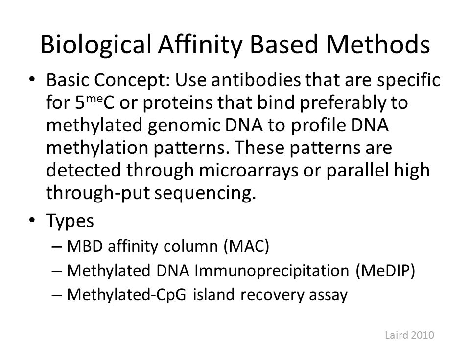 Biological Affinity Based Methods Basic Concept: Use antibodies that are specific for 5 me C or proteins that bind preferably to methylated genomic DNA to profile DNA methylation patterns.