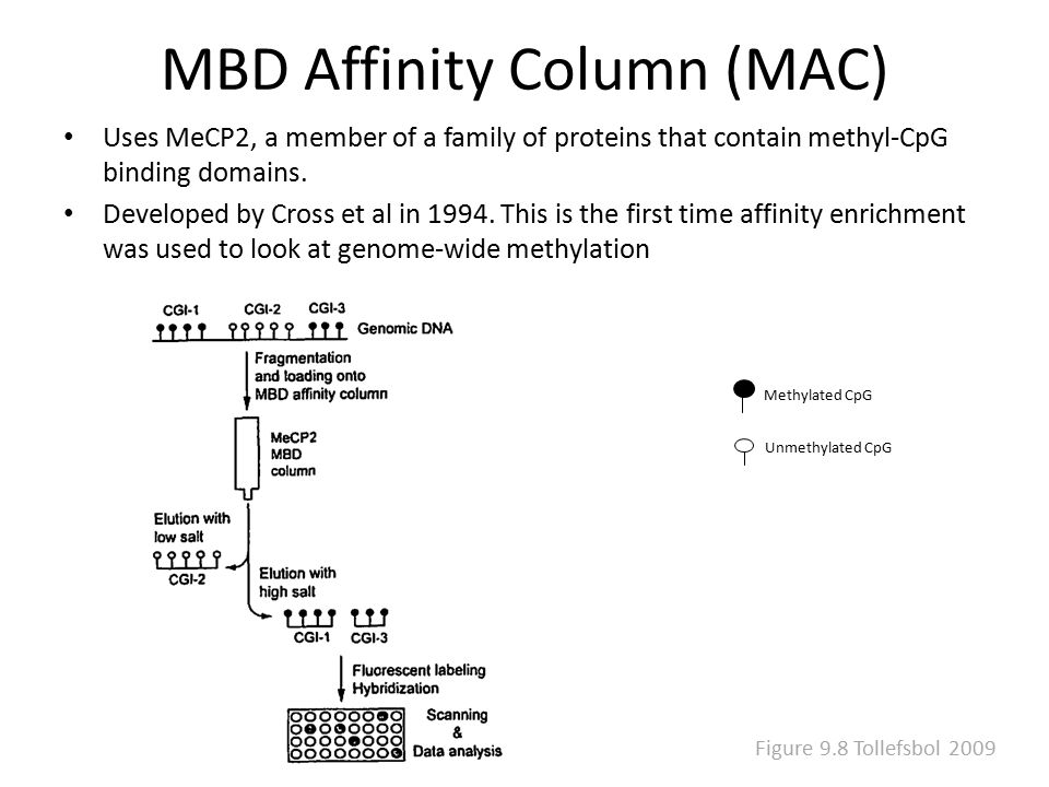 MBD Affinity Column (MAC) Uses MeCP2, a member of a family of proteins that contain methyl-CpG binding domains. Developed by Cross et al in 1994. This