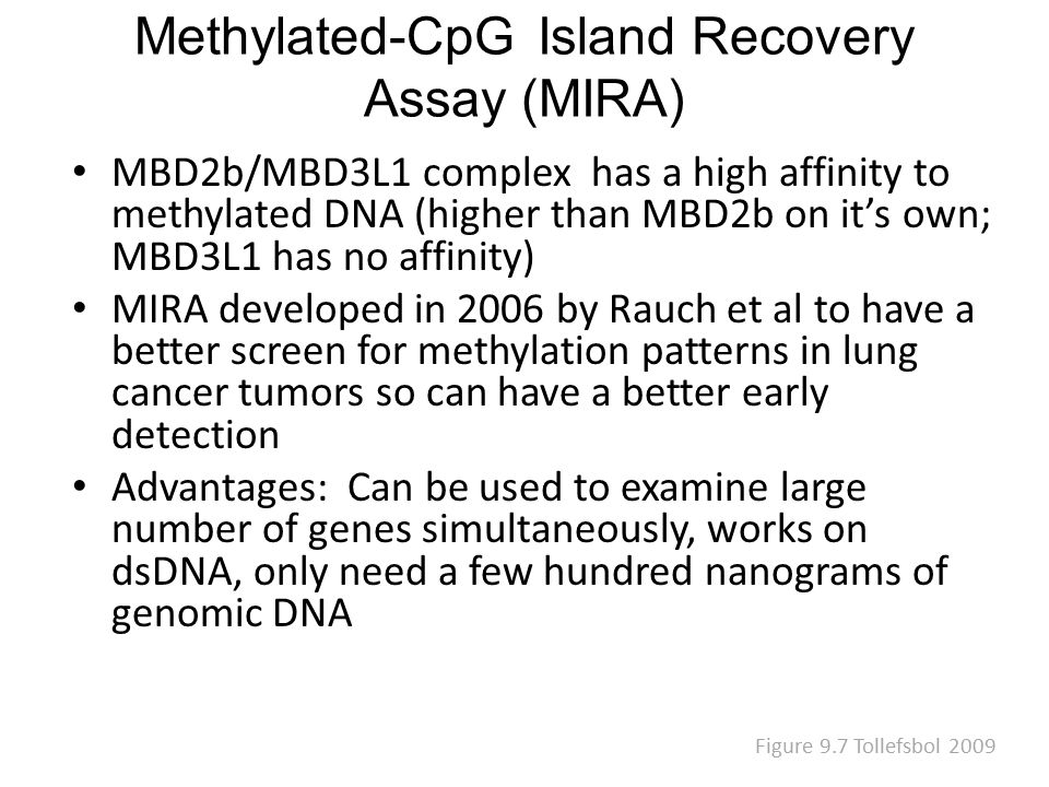 Methylated-CpG Island Recovery Assay (MIRA) MBD2b/MBD3L1 complex has a high affinity to methylated DNA (higher than MBD2b on it's own; MBD3L1 has no affinity) MIRA developed in 2006 by Rauch et al to have a better screen for methylation patterns in lung cancer tumors so can have a better early detection Advantages: Can be used to examine large number of genes simultaneously, works on dsDNA, only need a few hundred nanograms of genomic DNA Figure 9.7 Tollefsbol 2009