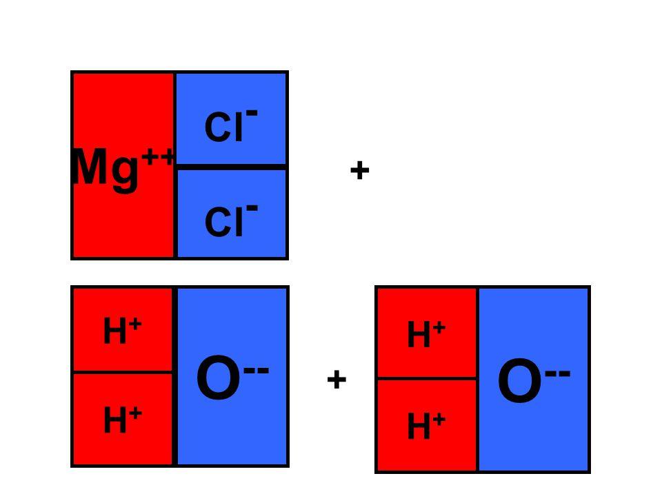 Mg ++ Cl - + + O -- H+H+ H+H+ H+H+ H+H+