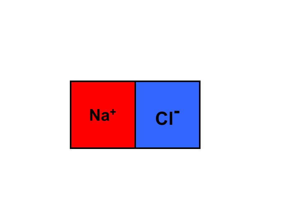 Na + Cl -
