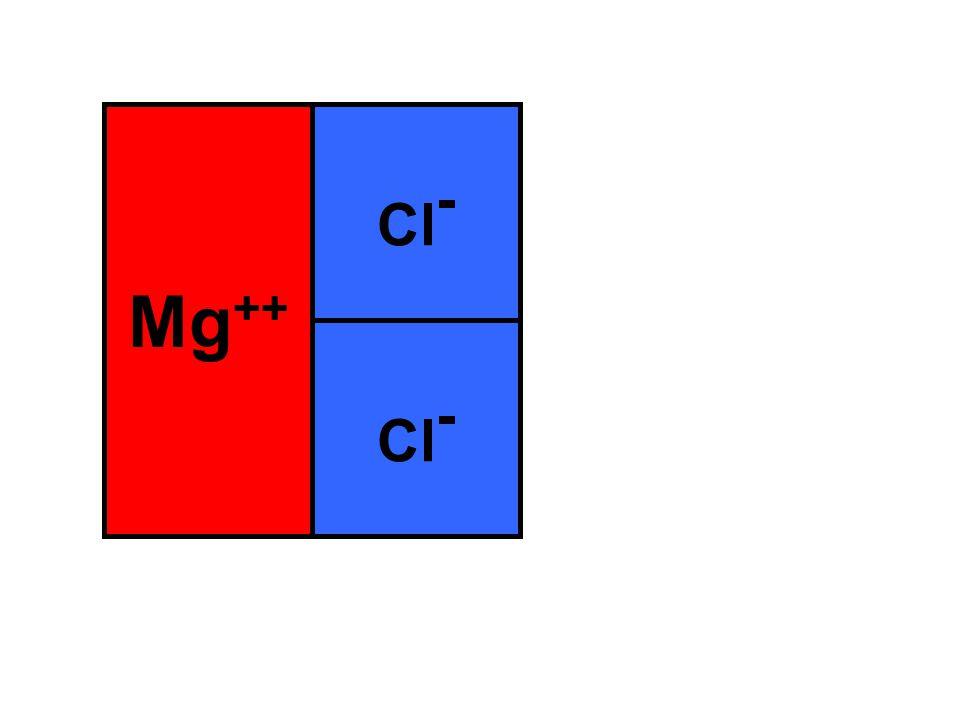 Mg ++ Cl -