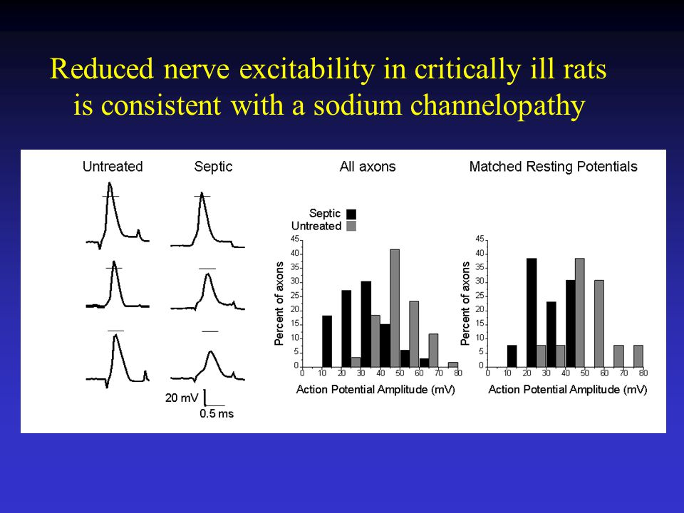 Reduced nerve excitability in critically ill rats is consistent with a sodium channelopathy