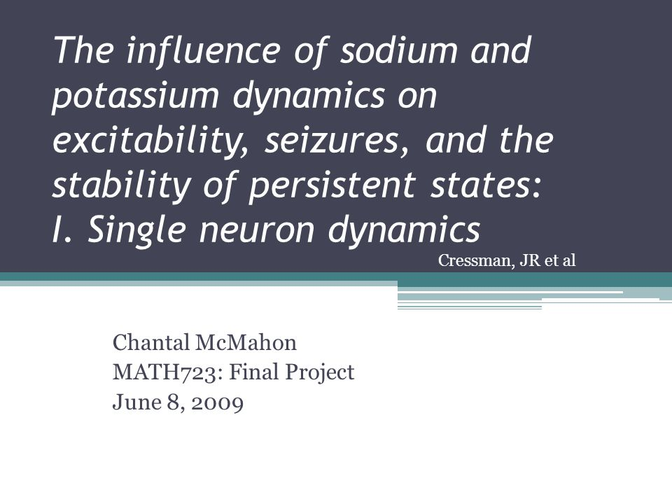 The influence of sodium and potassium dynamics on excitability, seizures, and the stability of persistent states: I.