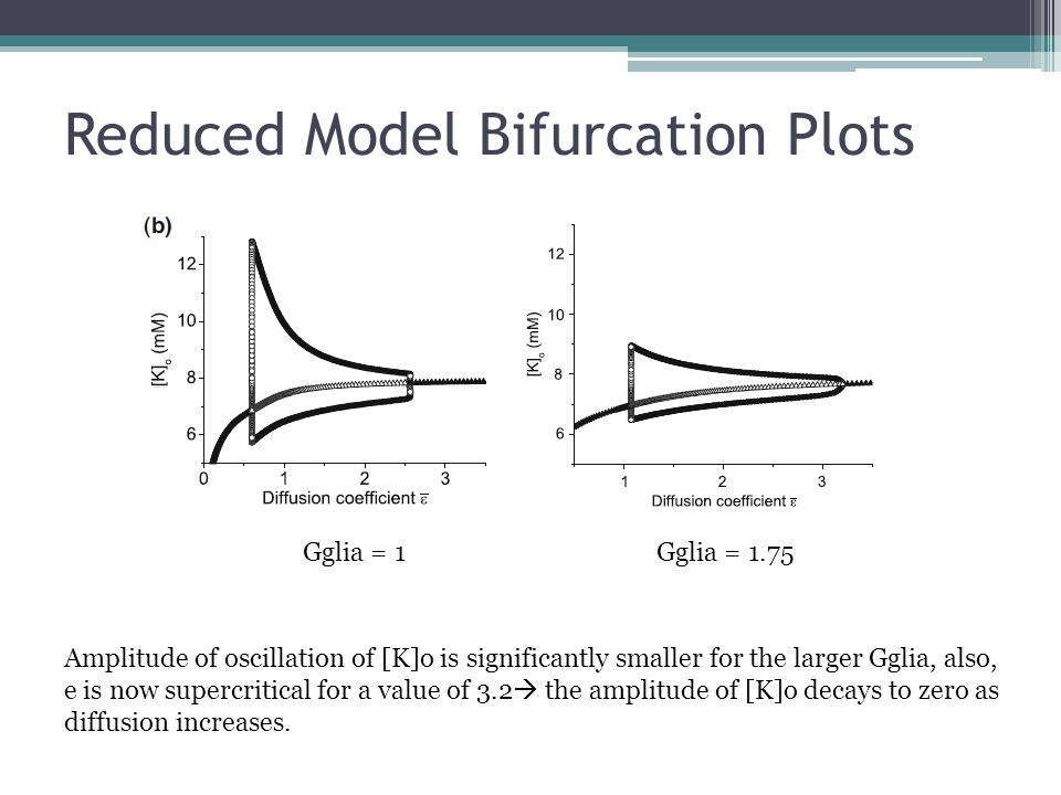 Reduced Model Bifurcation Plots Gglia = 1Gglia = 1.75 Amplitude of oscillation of [K]o is significantly smaller for the larger Gglia, also, e is now supercritical for a value of 3.2  the amplitude of [K]o decays to zero as diffusion increases.