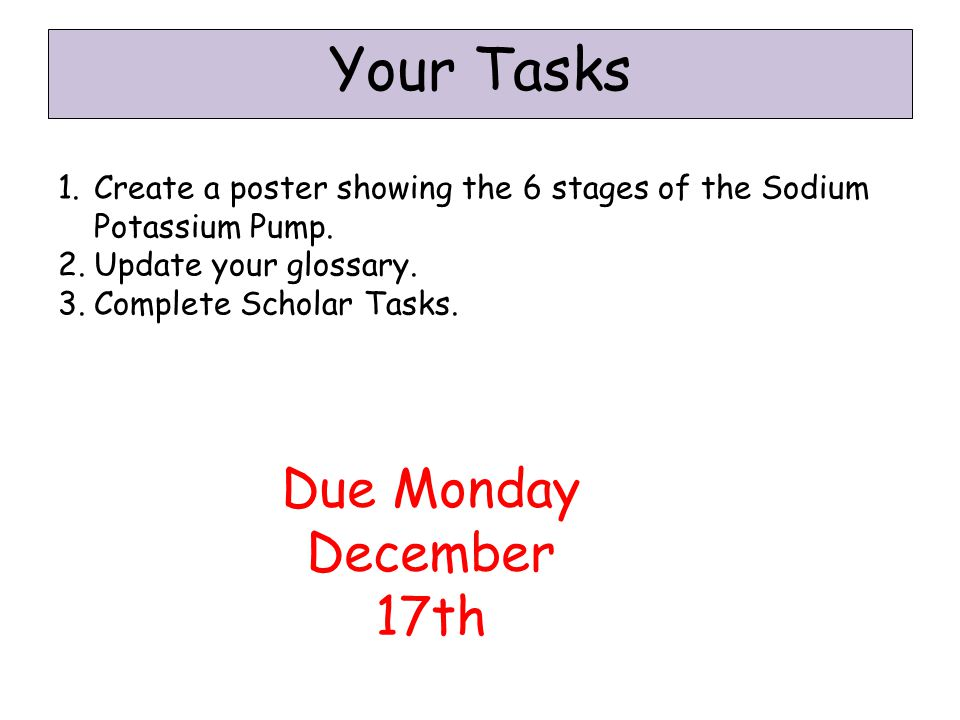 Your Tasks 1.Create a poster showing the 6 stages of the Sodium Potassium Pump.