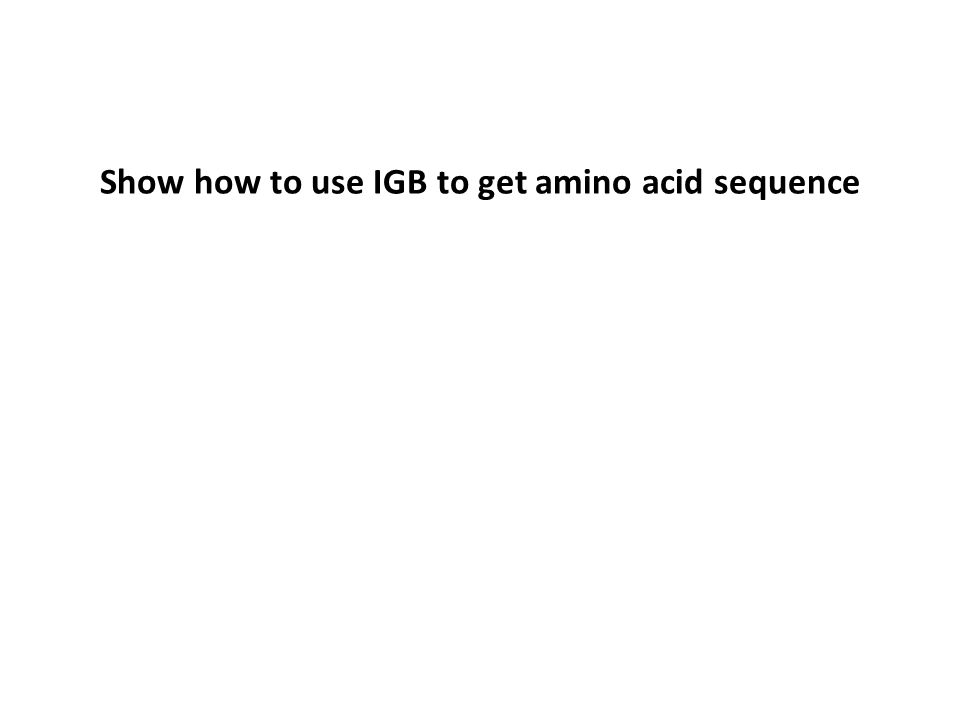 Show how to use IGB to get amino acid sequence