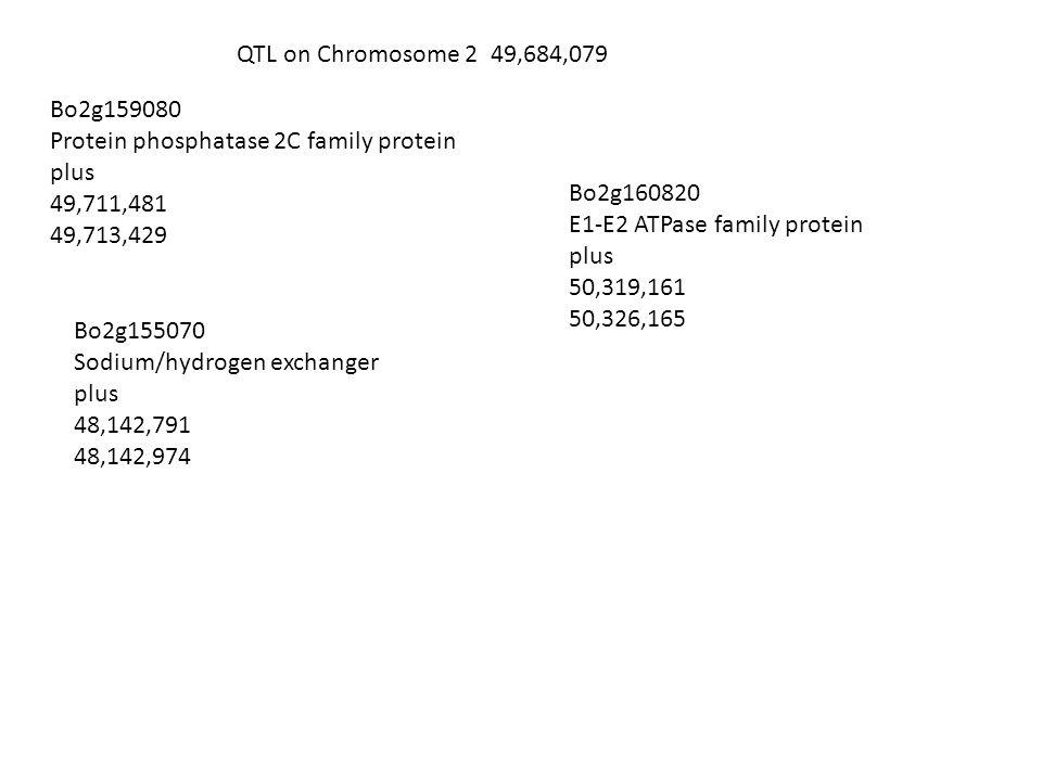 QTL on Chromosome 2 49,684,079 Bo2g159080 Protein phosphatase 2C family protein plus 49,711,481 49,713,429 Bo2g160820 E1-E2 ATPase family protein plus 50,319,161 50,326,165 Bo2g155070 Sodium/hydrogen exchanger plus 48,142,791 48,142,974