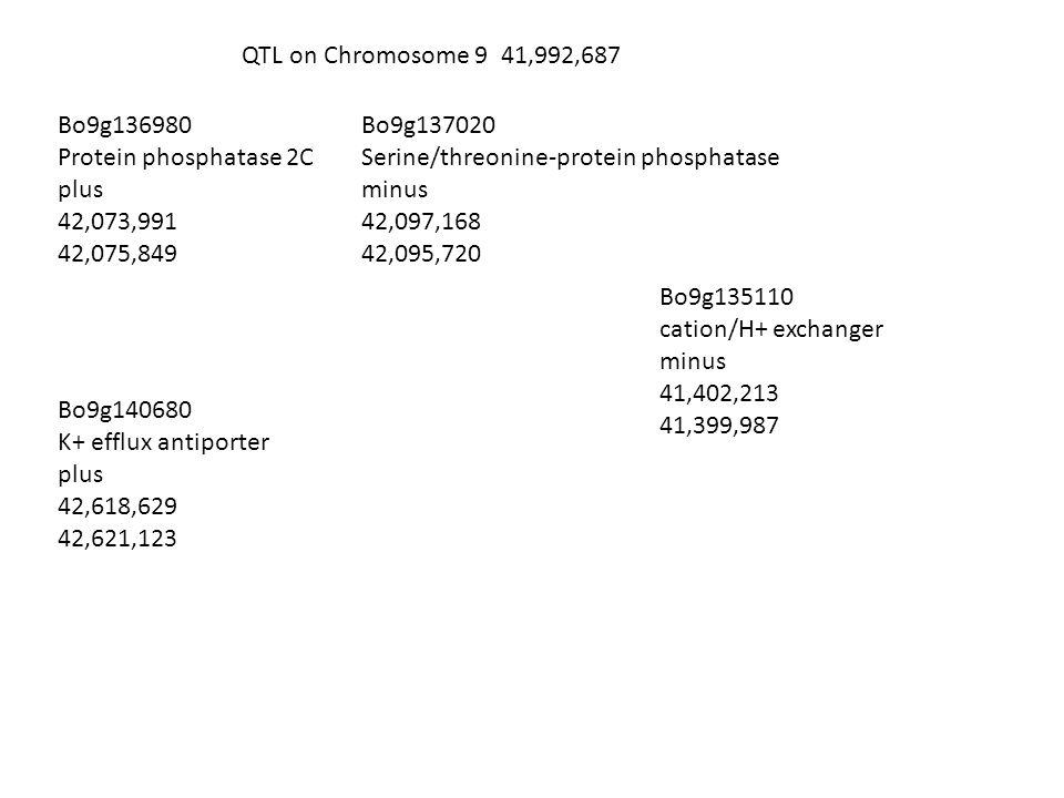 QTL on Chromosome 9 41,992,687 Bo9g136980 Protein phosphatase 2C plus 42,073,991 42,075,849 Bo9g137020 Serine/threonine-protein phosphatase minus 42,097,168 42,095,720 Bo9g140680 K+ efflux antiporter plus 42,618,629 42,621,123 Bo9g135110 cation/H+ exchanger minus 41,402,213 41,399,987