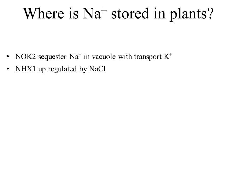 Where is Na + stored in plants.