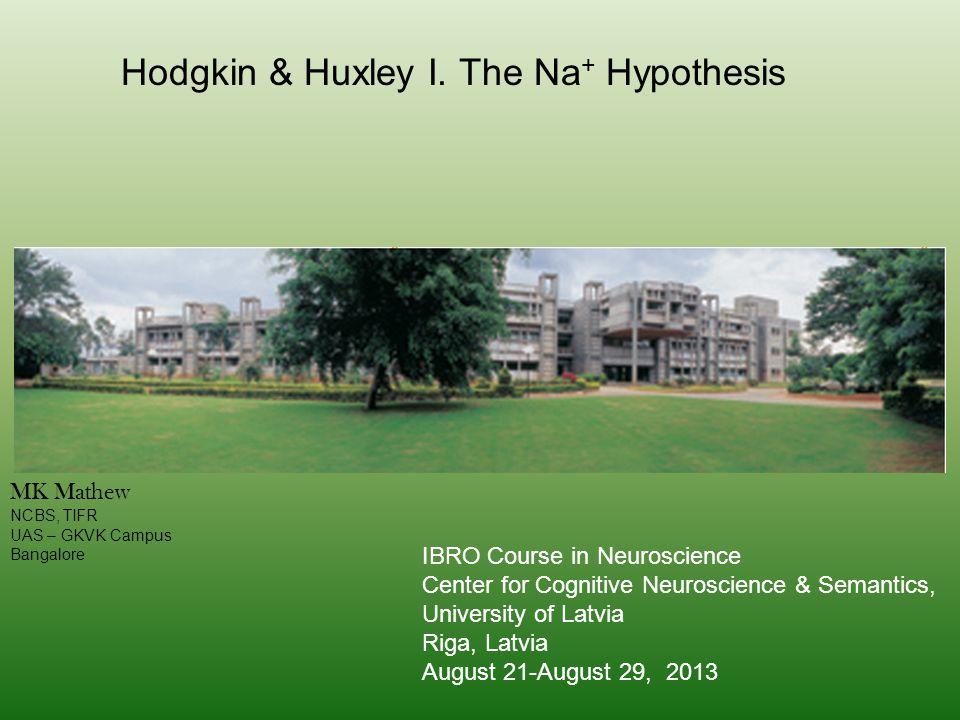 Hodgkin & Huxley I.