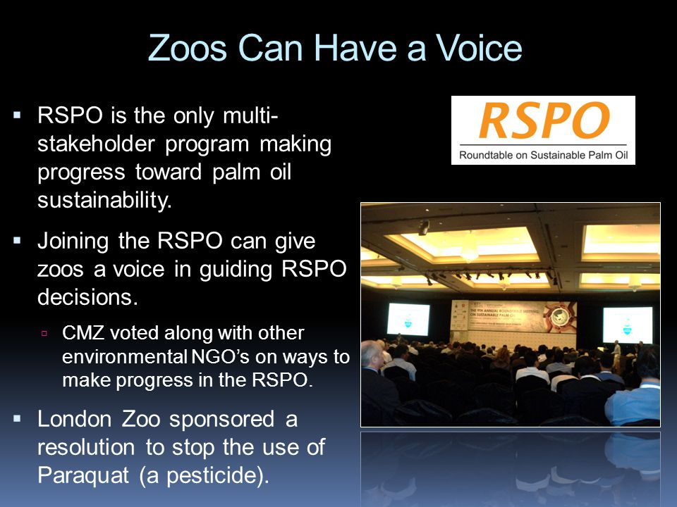 What Can Zoos Do to Help.