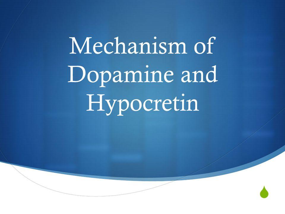  Mechanism of Dopamine and Hypocretin